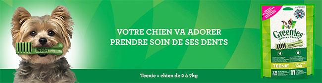 Recevez gratuitement un échantillon de bâtonnets à mâcher Greenies