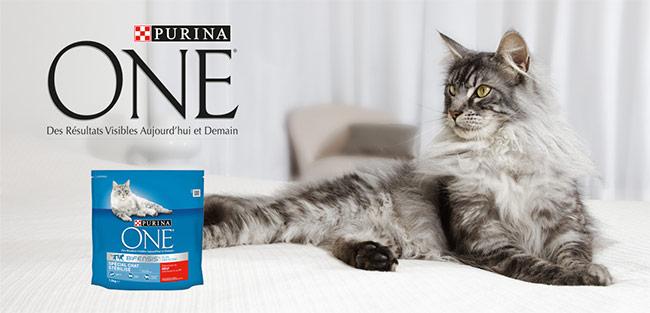 testez les croquettes Purina One Bifensis pour chats stérilisés