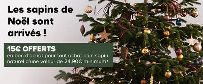 Bon d'achat de 15€ Castorama offert pour un sapin acheté