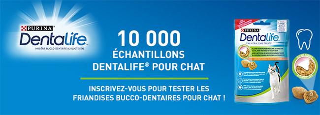 Sachets de friandises bucco-dentaires Dentalife pour chats offerts