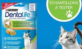 10'000 échantillons gratuits de friandises Dentalife pour chats
