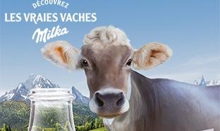 Jeu Les vraies vaches Milka
