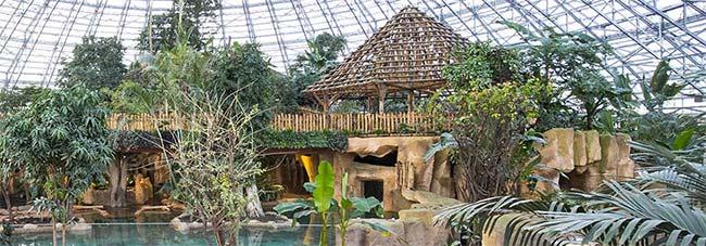 Tentes de remporter un séjour au ZooParc de Beauval avec Carrefour