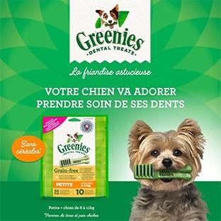 Échantillons gratuits : Bâtonnets à mâcher Greenies pour chiens