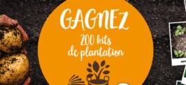 Jeu La Pompadour : 200 kits de plantation à gagner