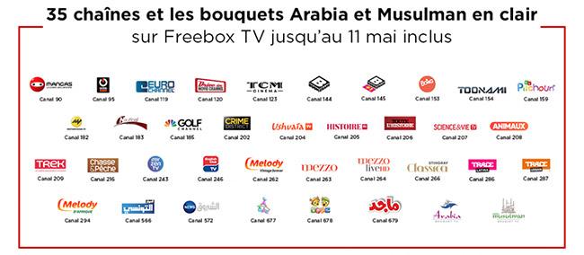 chaînes à voir gratuitement via la Freebox