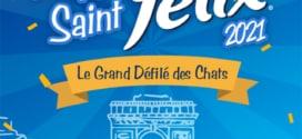 Jeu Saint-felix.com : 300 coffrets de fêtes pour chat à gagner