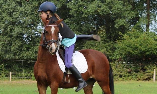 Journées du cheval - Tous à cheval FFE 2021
