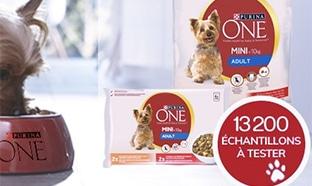 Test Conso Animo : échantillons pour chien Purina One Mini gratuits