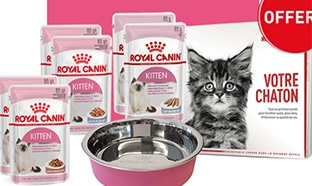 Royal Canin : Kits chaton offerts en magasin