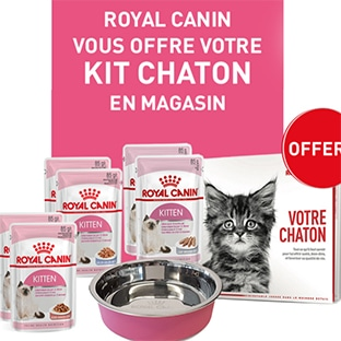 Royal Canin : Kits chaton offerts en magasin