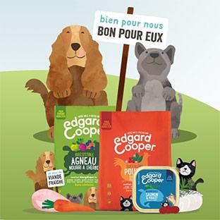 Jeu Yummypets : 1 an d'alimentation, cartes Amazon de 50€…