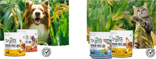 croquettes Beyond Grain Free pour chats et chiens offerts avec The Insiders
