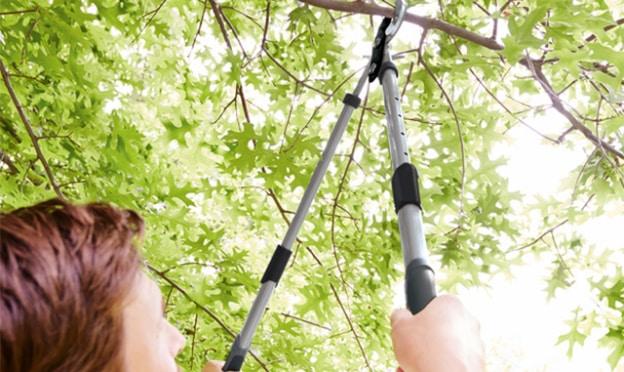 Lidl : Coupe-branches télescopiques Parkside pas cher