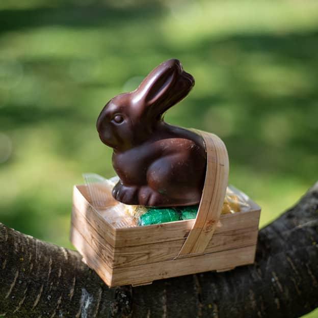 Pâques Intermarché : 10€ en bons offerts dès 20€ de chocolats